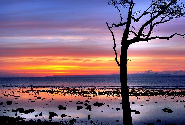 Chidiya Tapu pic credit: tourtravelworld